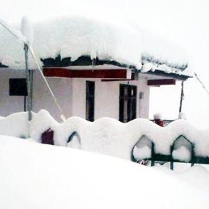 hotel kalpa packages himachal