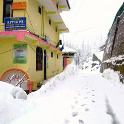 Snow at Hotel Apple Pie in Kalpa